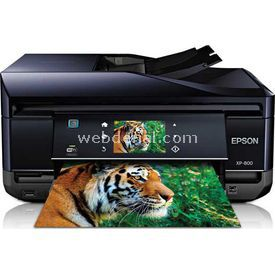 Epson C11cc45303 Expression Premium Xp-800, Aio Photo Inkjet A4, 5 Cartridges Claria