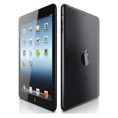 Apple iPad Mini MD528TU-A 16GB Wi-Fi Siyah Distribütör resim