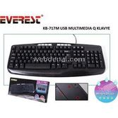 Everest Kb-717m Siyah Usb Multimedya Q Klavye