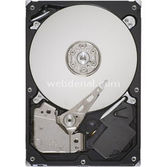 Seagate St31000524as 1 Tb, 7200 Rpm, 32 Mb Cache,sata3,6 Gb/sncq,