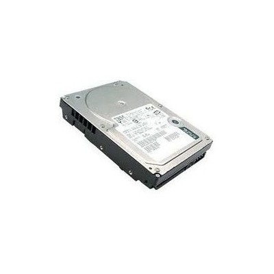 Dell 600GB Hot Plug Hard Disk - 11025H10SAS-600G