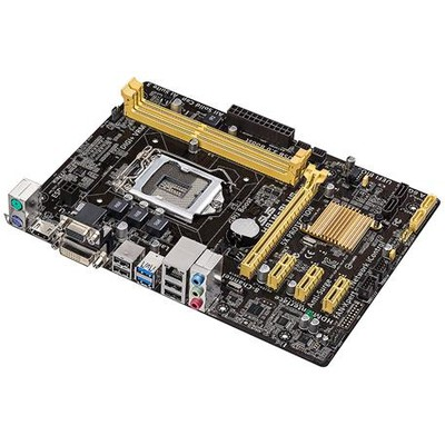 Asus H81M-plus Intel Anakart