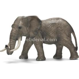 Schleich Afrika Fili Erkek Figür 16 Cm Figür Oyuncaklar