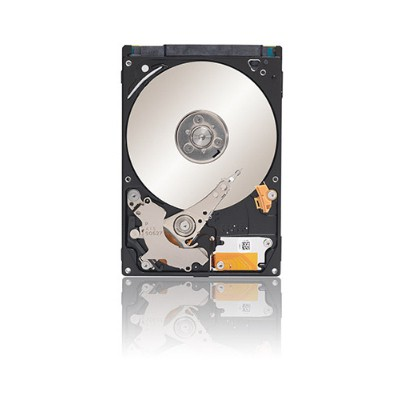 Seagate 500GB Laptop Thin Hard Disk (ST500LM021)