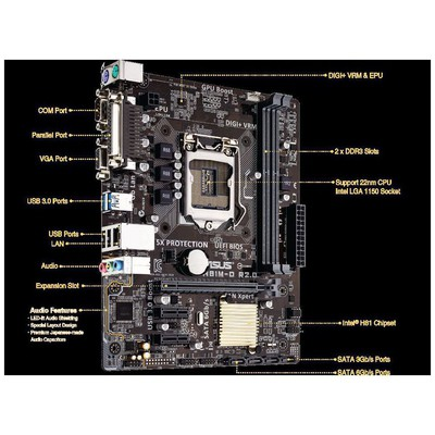 Asus H81M-d R2.0 Intel Anakart
