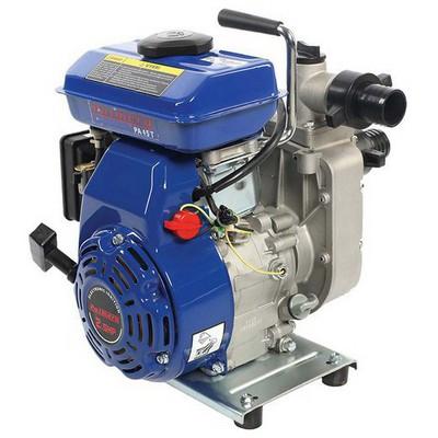 "Palmera Pa15t Su Motoru 1,5"" 4-zamanlı Su Motoru & Hidrofor"
