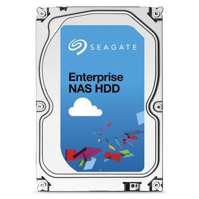 Seagate Enterprise 6TB NAS Hard Disk - ST6000VN0001