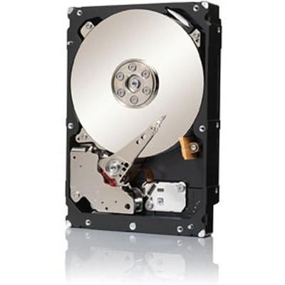 Seagate Enterprise Capacity 4TB Hard Disk (ST4000NM0033)