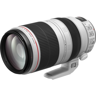 Canon Lens EF 100-400mm f 4.5-5.6 L IS II USM