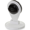 Assmann DN-16047 Güvenlik Kamerası