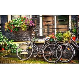 Educa Pintoo 1000 Parça  Amsterdam Puzzle