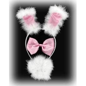 Parti Paketi Pufuduk Tavşan Seti Kanat / Taç