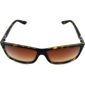 Despada 1414 C2 59 Polarize Erkek Erkek Güneş Gözlüğü