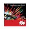 Adobe Acrobat Pro Dc Subs All Mlp 1 User 12 Ays Ofis Yazılımı