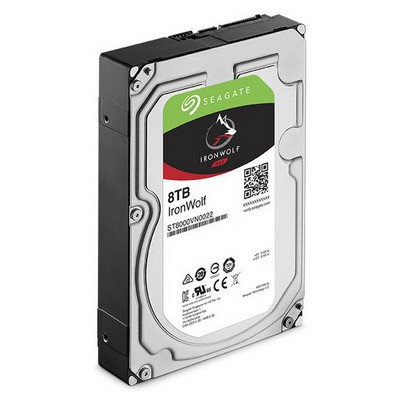 Seagate IronWolf 8TB NAS Hard Disk (ST8000VN0022)