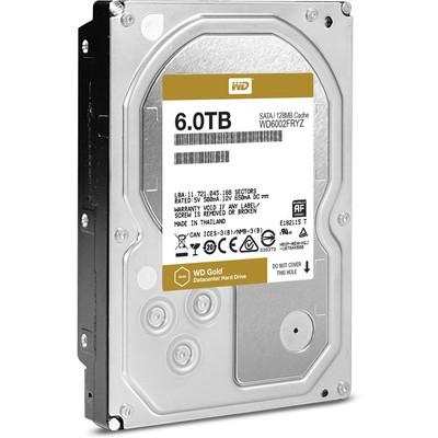WD Gold 6TB Datacenter Hard Disk (WD6002FRYZ)