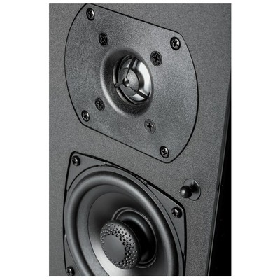 Definitive Technology SR9080 High-Performance Bipolar Surround Speaker Çift Raf Tipi Hoparlör