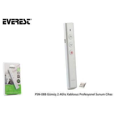 Everest PSN-08B-G 2.4GHZ Presenter Lazer Gümüş USB Kumanda