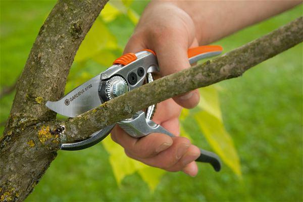 <strong>Hassas kesim</strong><br/> Hassas bilenmiş bıçaklar çiçek, ince dal ve dalları hassas bir şekilde kesmeyi sağlar. Gerektiğinde bıçaklar değiştirilebilir.