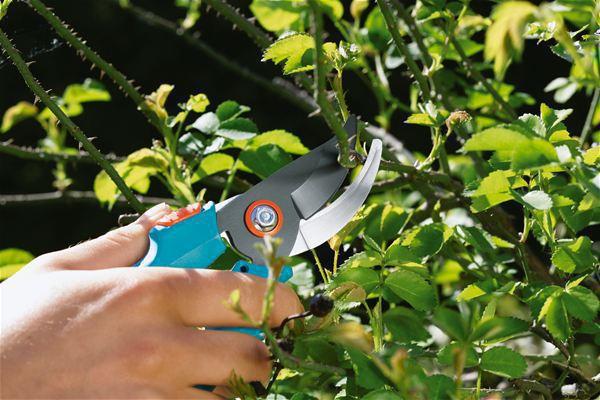 <strong>Classic Bahçe Makası</strong><br/> Sarmaşıklar ve Dallar hassas kesim için GARDENA Klasik Bahçevan makasları. Üst bıçak sopa kaplı değildir ve alt bıçak paslanmaz çelikten imal edilmiştir. Tek el emniyet kilidine sahiptir. Maksimum dal çapı 20 mm.