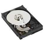 Dell 6TB NLSAS Hard Disk (13035H72NLS-6T)