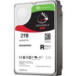 Seagate IronWolf Pro 2TB Hard Disk (ST2000NE0025)