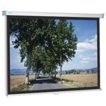Projecta SlimScreen 240x139 Projeksiyon Perdesi (10201073)