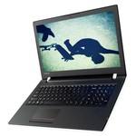 Lenovo V510 Laptop (80WQ024NTX)